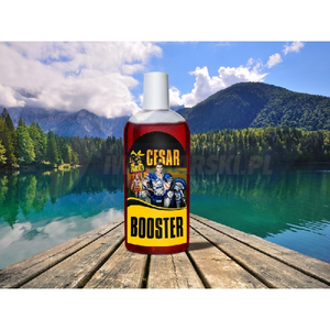 INVADER Booster Cesar- aromat squid porzeczka 250ml